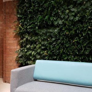 Living wall - Green office environment with plants