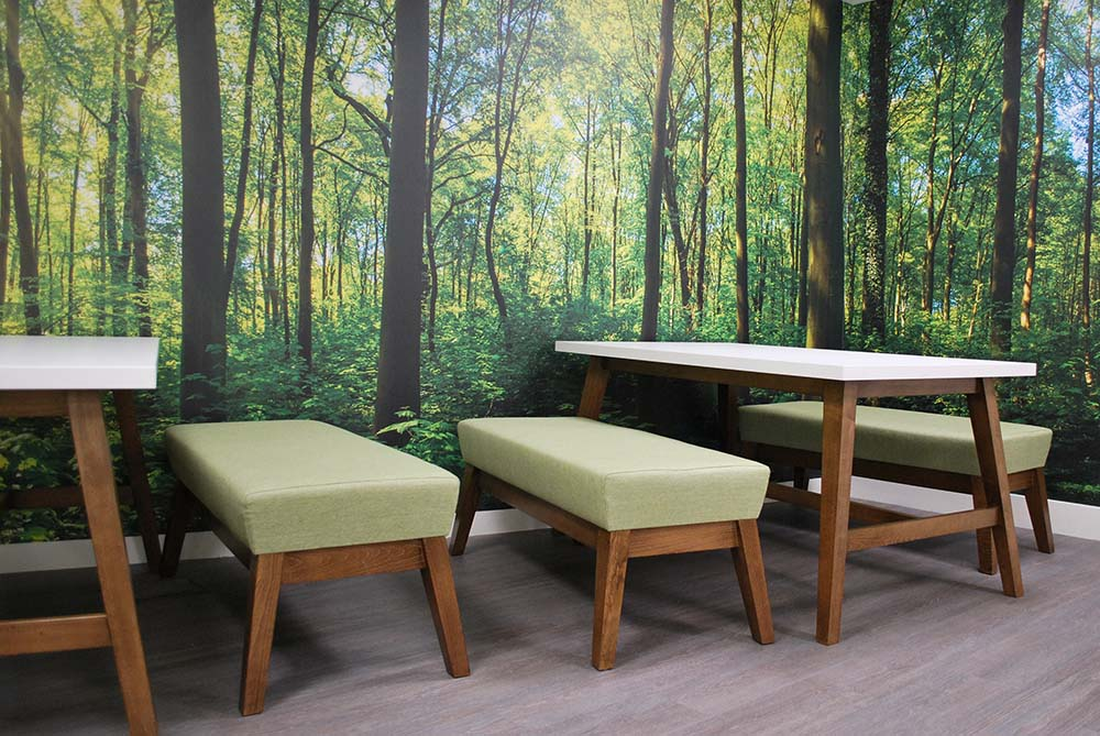 Breakout area with woodland wall graphic