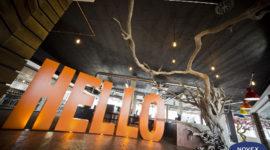Case Study: Big Orange Hello Games office Reception with Tree designed by Dorian Braam