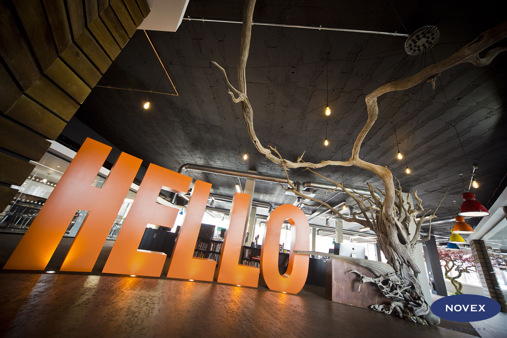 Big Orange Hello Games office Reception with Tree designed by Dorian Braam